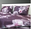 Спален Комплект Перкал Пролетен Цвят със завивка